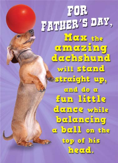 Amazing Dachshund Funny Father's Day Card Funny Animals