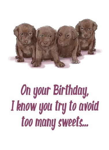 Avoid Sweets Funny Birthday Card Dogs Say Happy Birthday with this cute card or ecard with chocolate lab puppies and we'll send it with free postage! ...But I couldn't pass up these Chocolates!
