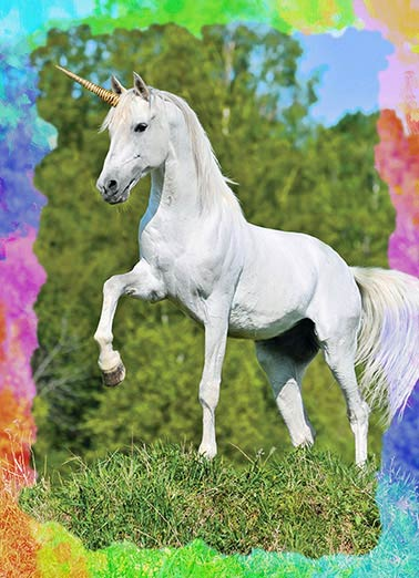 Funny For Us Gals Card  unicorn, magical, fairy, princess,  Wishing you a Birthday filled with Awesome!
