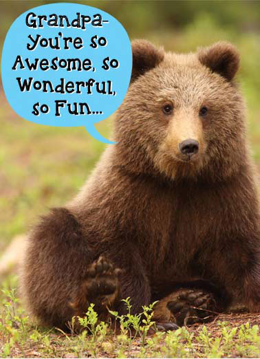 Bearly Funny 5x7 greeting  Funny Animals A bear tells you how wonderful you are. | bear bearly father father's day wonderful fun awesome covers cover  And the Bearly covers it