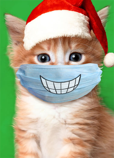 Big Smile Cat Xmas Funny Christmas  Cats   Hope Christmas puts a big smile on your face!