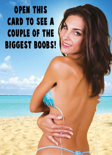 Biggest Boobs Funny  Card  A picture of an attractive woman covering her chest. | hot babe big biggest boob boobs birthday happy island tropical political donald trump mike pence president oval office vice white house congress republican democrat idiot idiots congress washington dc  Happy Birthday