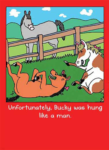 Bucky Funny Valentine's Day Card Dirty Sexy Naughty   On Valentine's Day - Don't get hung up on the small things.