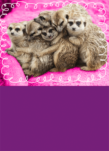 Bunches Of Hugs Birthday  Funny Heartfelt Card   Sending you bunches of hugs for your birthday! | meerkats animals hug greeting card sweet nice friend friends happy warm group  Sending you bunches of hugs for your birthday!