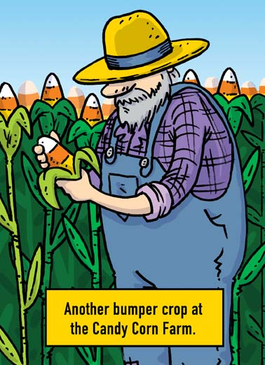 Candy Corn Farm Funny Halloween  Funny a farmer checks his candy corn crop on this funny halloween greeting card, say happy halloween with this hilarious greeting card featuring a farmer checking his candy corn crop, the perfect halloween greeting card for someone who loves farms, farmers, farming, candy, candy corn, corn,   Not to be too corny, but hope you have a Happy Halloween.