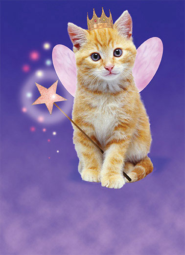 Cat Fairy  Funny Card    Time again for a visit from the Birthday Furry!