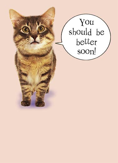 Cat Scan Get Well Funny Cats Card  A quick Cat Scan! Get Well Soon A quick CAT SCAN shows you'll be back to normal in no time!