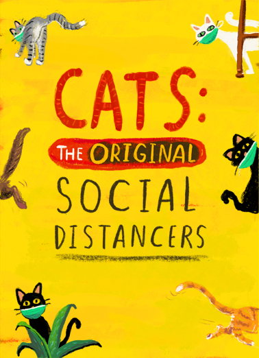 "Cat Social Distance Funny Quarantine Card  Send a smile with this ""Cat Social Distance"" Birthday Quarantine card or Ecard to put a smile on someone's face today... and we'll include Free first-class postage on all printed cards and a free printout link on all Ecards that arrive instantly.  Wishing you a Happy Socially-Distanced Birthday!"