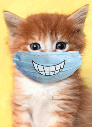 Cat Wearing Mask Everyday Funny Get Well Card  Let someone know you're thinking about them by sending a personalized greeting card today! | social distancing quarantine mask smile cat thoughts prayers warm wishes  Cat Wearing Mask Everyday