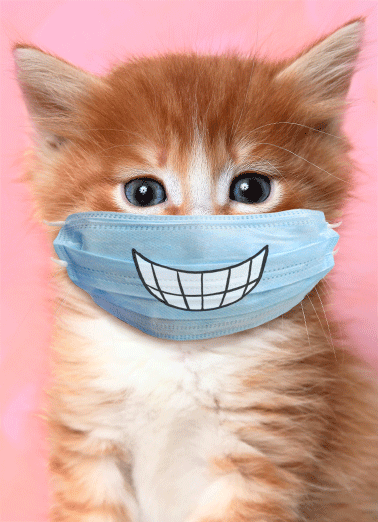Cat Wearing Mask MD Funny Quarantine Card Mother's Day Send Mom a personalized greeting card just in time for Mother's Day! | social distancing quarantine cat with mask safety healthy protected smiling big smiles happy cute silly  Hope you're smiling big on Mother's Day!