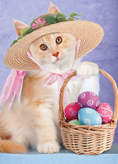 Cat With Basket Funny Easter Card   Wishing you a fabulously purrfect Easter! | cat basket hat Easter dressed up fancy colored eggs sweet   Wishing you a fabulously purrfect Easter!