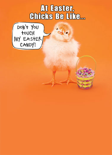 Chicks Be Like Funny Megan Card  Don't you touch my Easter candy! | chick baby attitude don't touch candy funny Easter basket  Happy Easter