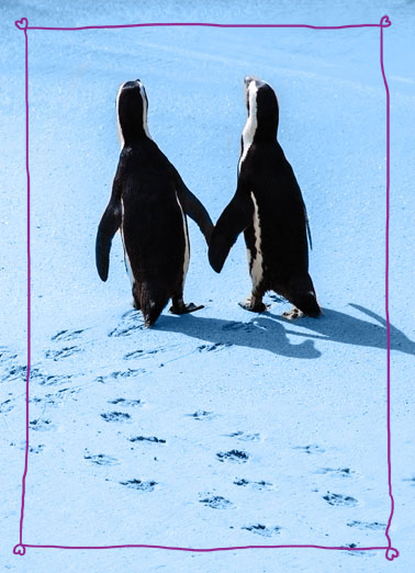 Chillin (LV) Funny Kevin Card Love Two penguins that look like they are holding hands. | penguin photo arctic fin hand hands love chill chillin' nothing better There's nothing I like better than just chillin' with you.