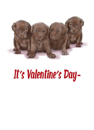 Valentines Day Chocolates Funny Valentine's Day Card Dogs Some Valentine's Day Chocolate Labs on this sweet Val greeting card, And thought I'd treat you to some sweet chocolates.