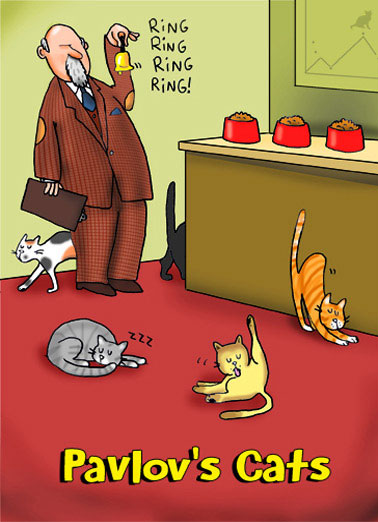 Funny For Any Time Card  Pavlov's Cats Cartoon | funny, cats, internet, pavlovian, bell, ignore, cartoons, comics, fun, lol, joke, meme, freud, psychology, humor, hilarious, panel, far, side, kittens, kitties, love, siamese, calico, tabby, food, cat, cheezburger, silly,  Happy Father's Day to a Dad who always has our undivided attention.