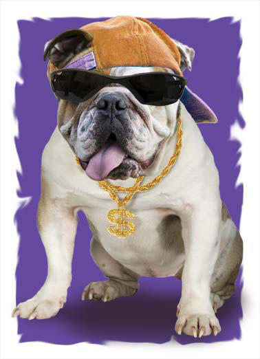 Dawg Funny Halloween  Dogs A picture of a bulldog with sunglasses and a chain with a dollar sign. | halloween dog k9 word up dog  scary candy Word Up, Dawg, It's Halloween!