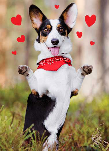 "Dog Hug Funny Valentine's Day Card For Anyone Dog trying to give you a hug | dog k9 love bandana valentine valentines day hug hearts heart red   Sending you a Big ""Valentine's Day"" Hug!"