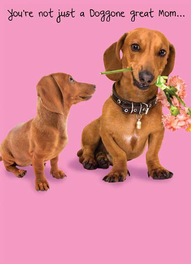 Doggone Funny Mothers Day Dogs Mom Mother Flowers Smile Dog Hotdog Dachshund Collar Kid