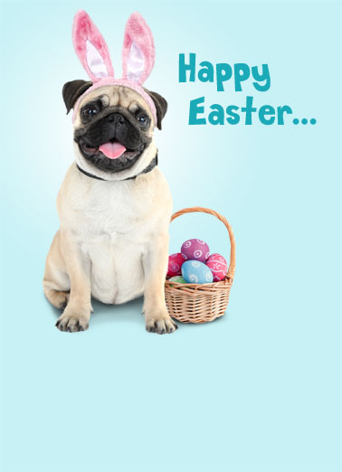 Easter Pugs Kisses Funny Easter Card  Send someone special a personalized greeting card just in time for Easter! | Pugs and Kisses sweet puppy dog Easter bunny ears cute adorable  with pugs and kisses!