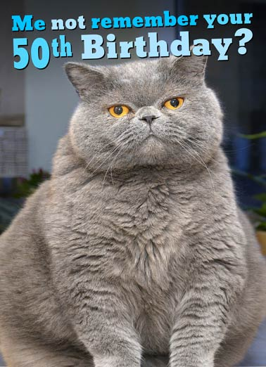 Fat Chance 50th Funny Birthday Card Cat Not Remember Your Greeting