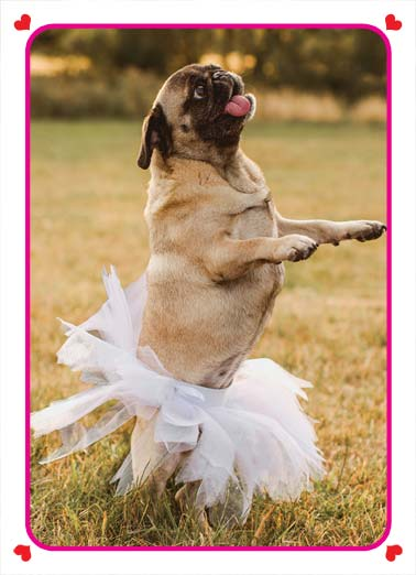 For Words VAL Funny Valentine's Day  Dogs A picture of a dog wearing a tutu. | happy valentine's day love tutu wonderful words heart love You're tutu wonderful for words.
