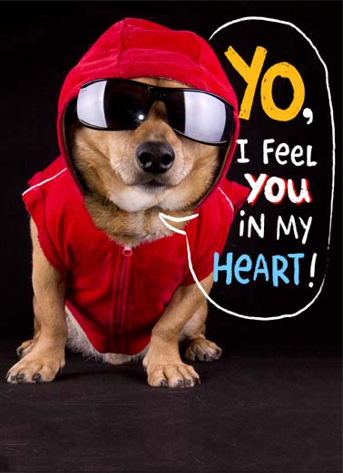 Gangsta VAL Funny Valentine's Day  Dogs A picture of a dogs wearing a hoodie and sunglasses saying 'I feel you in my heart'. | dog sunglasses hoodie Valentine's Day love heart feel Gangsta love happy  Hope your Valentine's Day is Gangsta!
