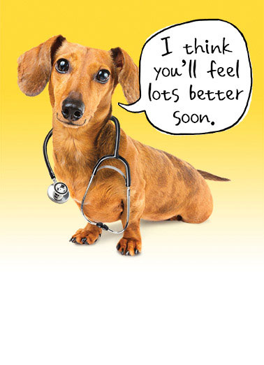 Funny Get Well  Dachshund ,  I checked with the Dach and he said you'll be better in no time!