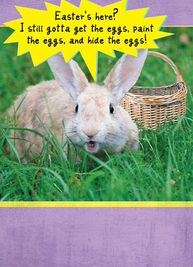 Get the Eggs Funny Easter Card Funny Animals Easter, Bunny, Basket, Cute, Sweet, Bunny, Case, Eggs, Hide, Spring  Don't let Easter make you into a Basket case.