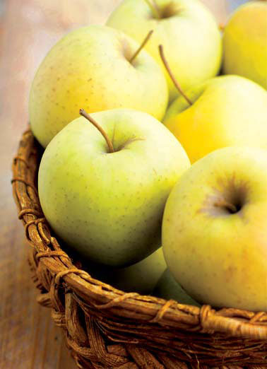Golden Delicious Funny Thanksgiving Card  Golden Delicious apples photo day basket food  Wishing you a Golden day!