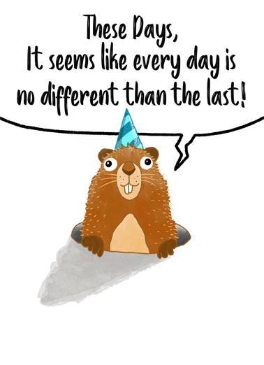 "Groundhog Bday Funny Birthday Card Funny Animals Send someone a personalized greeting card just in time for their birthday! | funny groundhog illustrated coronavirus shelter in place quarantine enjoy your special day celebrate  Happy ""Groundhog"" Birthday"