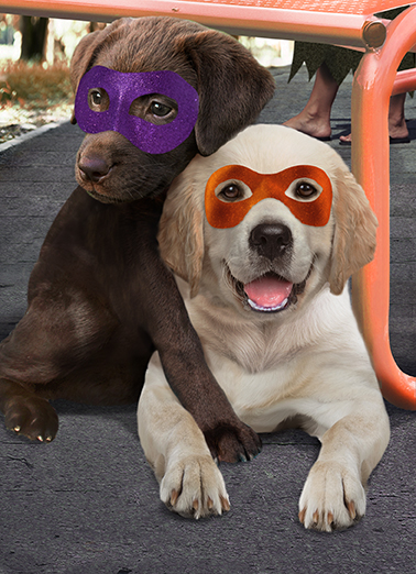 Halloween Hug Funny Halloween Card  Two dogs wearing Halloween masks hugging each other next to plastic pumpkin full of candy. | candy halloween hug hugging dog woof bark wag tongue  Sending you a Big, Loving Halloween Hug!