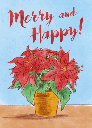 Merry Happy Poinsettia Funny Christmas Card Season's Greetings  Season's Greetings!