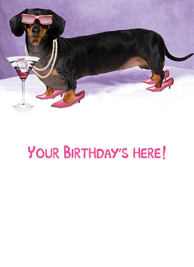 Funny Birthday Card Dachshund ,  HOT DOG!