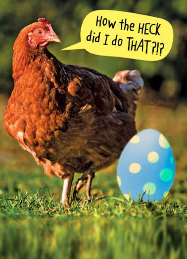 How the Heck Funny Easter Card Funny Chicken with giant Easter Egg | hen, hens, chick, eggs, farm,  Hope your Easter is filled with Big surprises.