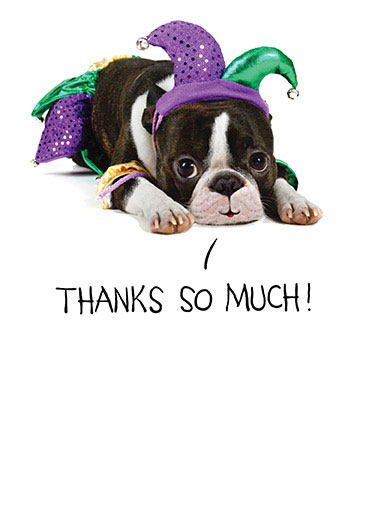 Funny Thank You Card  dog jester funny cute puppy thanks thank you , Just a little JESTER of my gratitude!