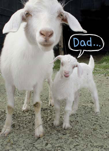 Funny Father's Day   dad father father's day goat kid , Even though sometimes I'm a little butthead, I was always proud to be your kid.
