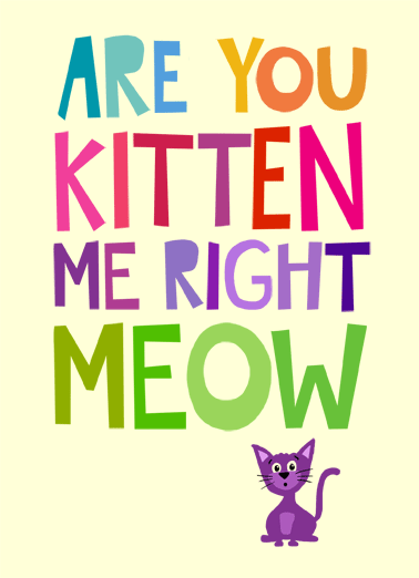 Kitten Meow Funny Birthday Card Funny Animals Say Happy Birthday with this funny cat pun greeting card.  Personalize and send a Happy Birthday wish with same-day mail and free first-class postage. I cat believe you're a year older!