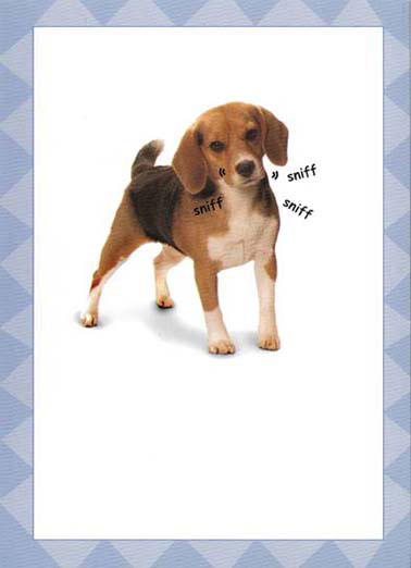 "Latkes Dog Funny Dogs Card   ""Do I smell Latkes?"""