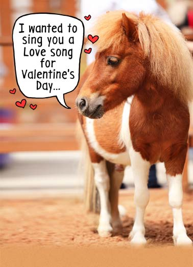 Little Horse VAL  Funny Animals Card Valentine's Day A small horse saying they want to sing you a song for Valentine's day. | little horse happy valentine day sing song love heart cute animal ride But I'm a little horse.