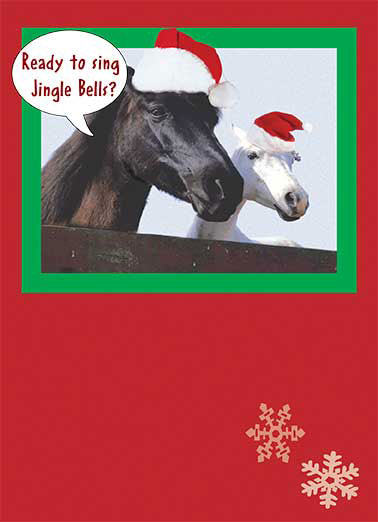 Funny Christmas Card  Two horses with santa hats | photo horse santa hat cap snowflake,