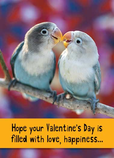 Love Birds Funny Valentine's Day Card For Anyone   ...And a few CHEEP thrills!