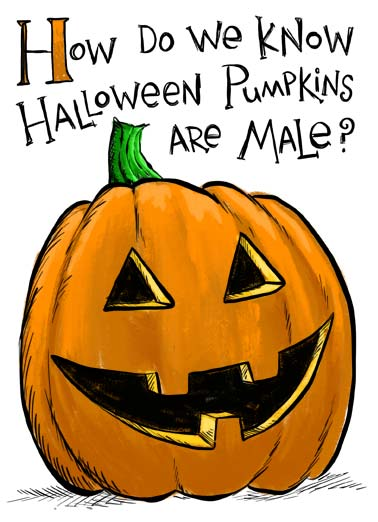 Male Pumpkins Funny Halloween   How do we know Halloween Pumpkins are male. | happy halloween pumpkin smell heads empty brain funny cartoon illustration few days Their heads are empty, they have mush for brains, and after a few days they start to smell funny.