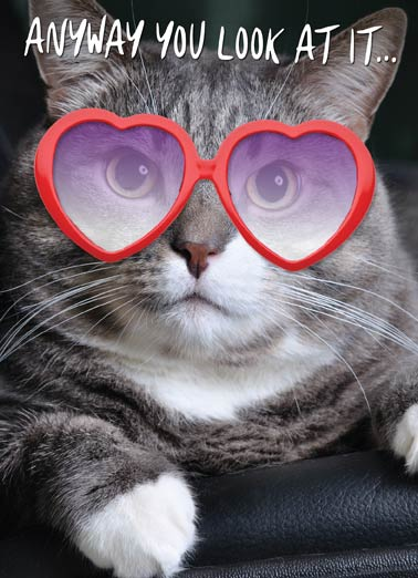 "Meowvelous Funny Birthday Card Cats cute cat wearing heart-shapped glasses on a greeting card. | funny, kitten, kitteh, lolcat, haha, funny, meow, kitty, meme, lol, haha, joke, animal, baby, birthday, party, bday, celebrate, present,  ""You're Meowvelous!"""