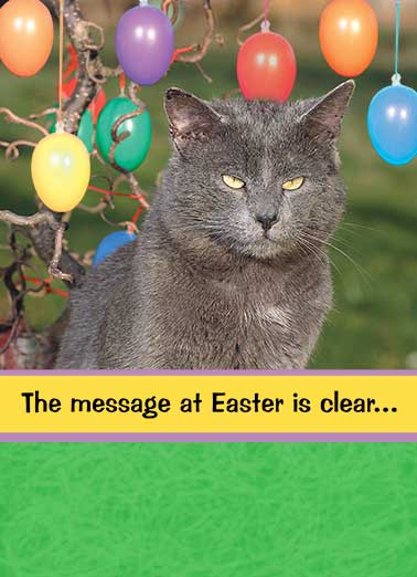 Message at Easter Funny Cats Card Easter