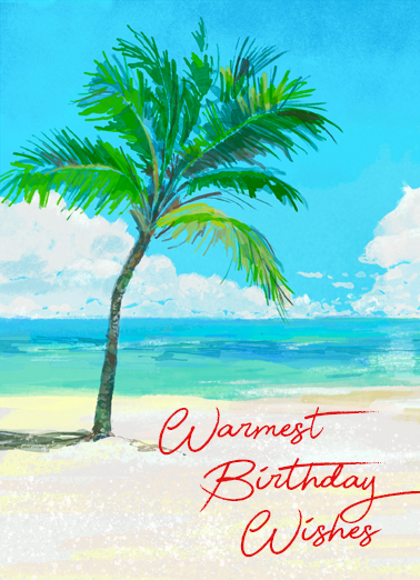 "Palm Tree Birthday Funny January Birthday   Send a warm wish with this ""Palm Tree"" Birthday card or Ecard to put a smile on someone's face today."