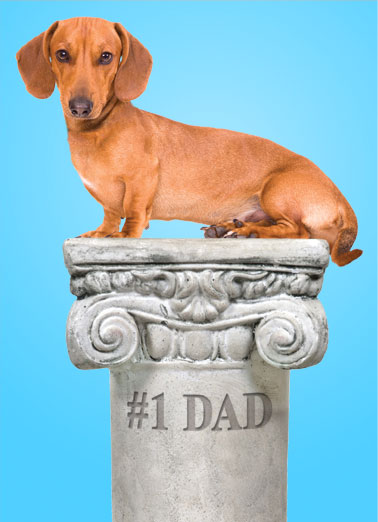 Pedestal (FD) Funny Father's Day Card Funny Animals A picture of a dog sitting on a pedestal with #1 dad etched into it. | dog father father's day happy daschund wienerful wiener sit sitting   They don't come any more wienerful than you!