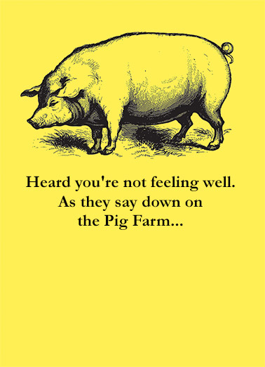 Pig Farm Funny 5x7 greeting Card Get Well   ...How long till you're Cured?  Get Well Soon