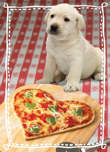 "Pizza My Heart Dog Funny Valentine's Day Card Dogs Cute puppy dog with heart shaped pizza on Valentine's Day greeting card |  ""Sending you a Little Pizza My Heart for Valentine's Day!"""