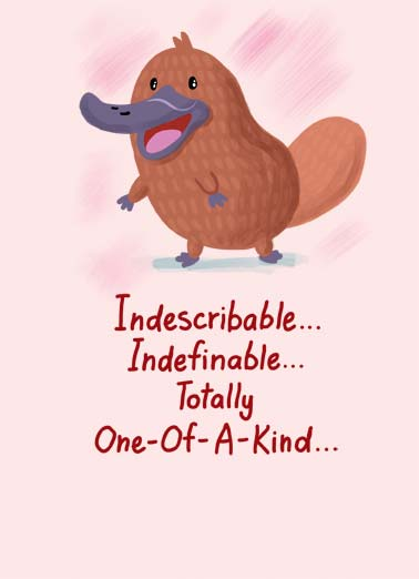 Platypus VAL Funny Valentine's Day Card  An illustration of a Platypus saying you're 'indescribable, indefinable, totally one-of-a-kind'. | cartoon illustration indescribable indefinable one-of-a-kind platypus happy valentine's day love You're the Platypus of friends!