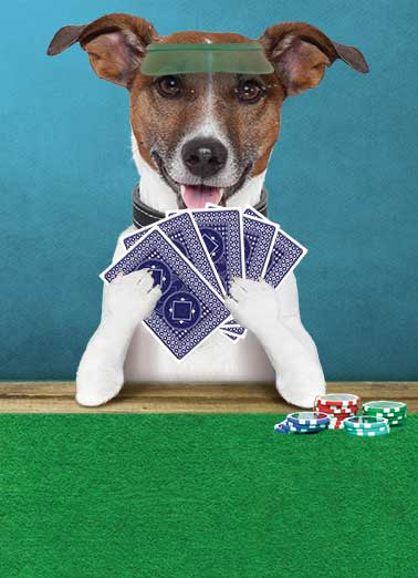 Poker Dog Funny Megan Card Dogs  Dad - You're Aces